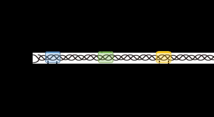 天然コラーゲン模式図